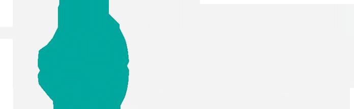 Toiste logo
